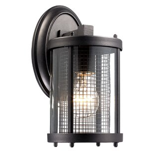 Holly Hills Outdoor Wall Lantern