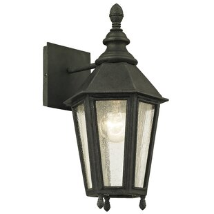 Darby Home Co Aaryahi Outdoor Sconce