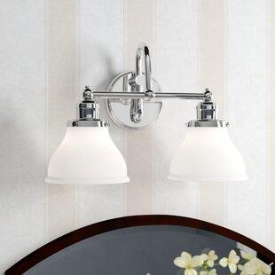 Birch Lane™ Atkinson 2-Light Vanity Light