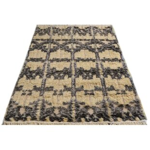 Compare Alfredo Moroccan Hand-Knotted Wool Ivory/Black Area Rug By Isabelline