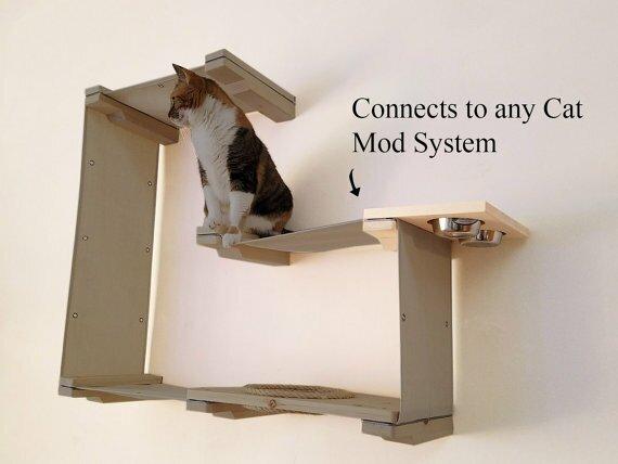 catastrophicreations 10 cat mod wall mounted feeder shelf wayfair