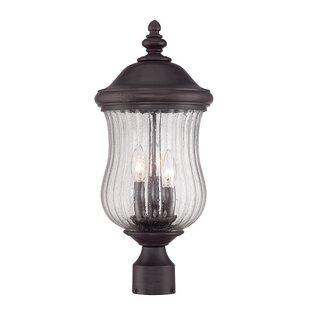 Berwyck 3-Light Lantern Head by Fleur De Lis Living