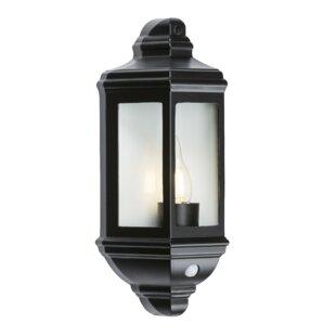 Irizarry 1 Light Outdoor Wall Lantern Image