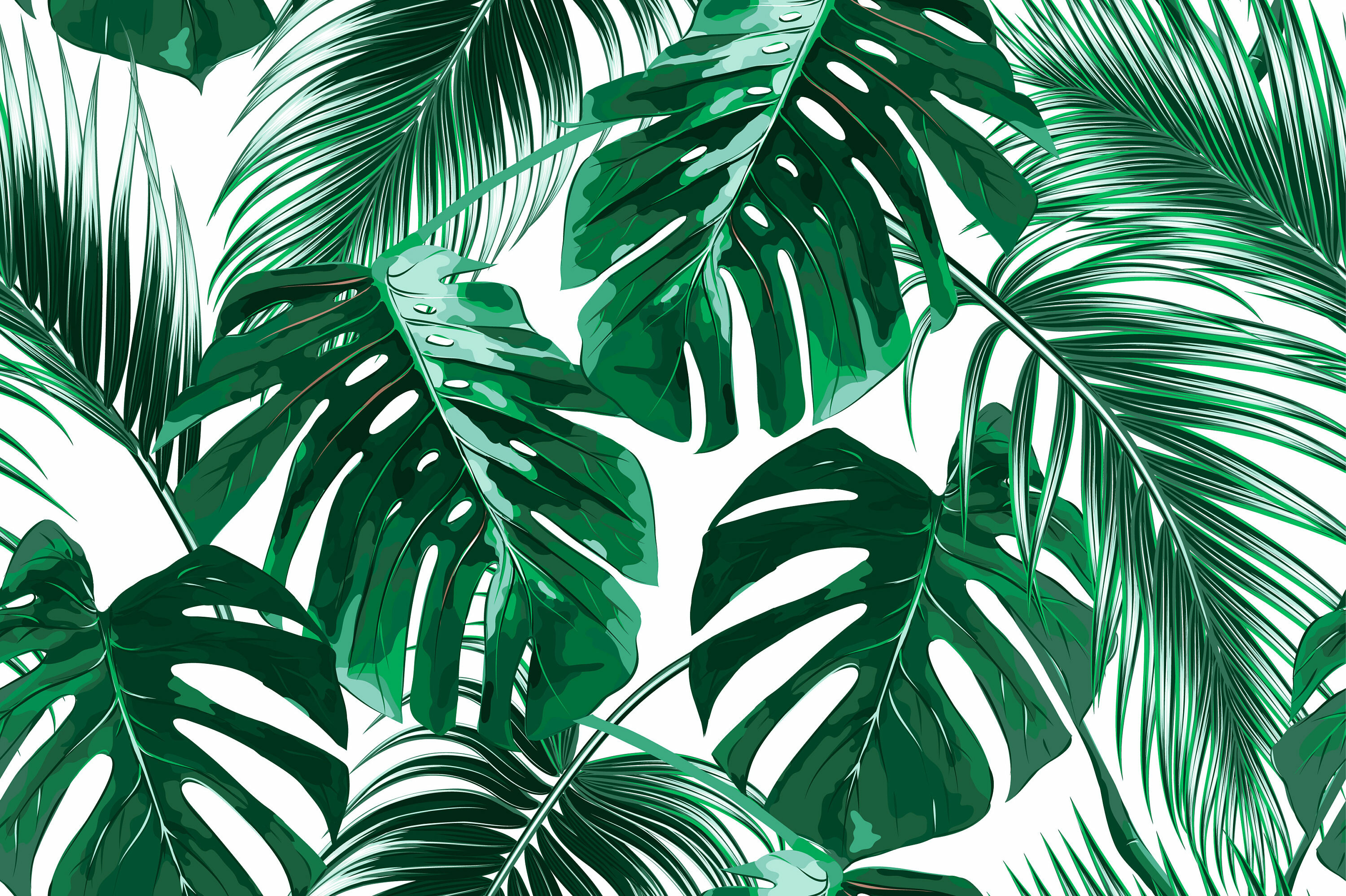 Bay Isle Home Agnon Removable Tropical Palm Leaves 3 92 L X 75 W Peel And Stick Wallpaper Roll Wayfair Please contact us if you want to publish a tropical leaves wallpaper on our site. agnon removable tropical palm leaves 3 92 l x 75 w peel and stick wallpaper roll