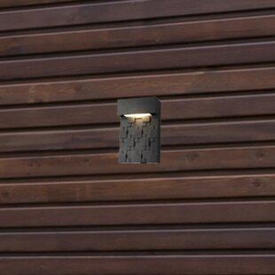 1-Light LED Outdoor Sconce By Living District Outdoor Lighting