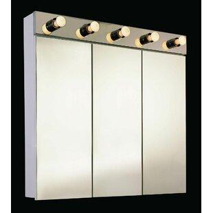 Triston 24 X 34 Surface Mount Medicine Cabinet with Lighting ByEbern Designs
