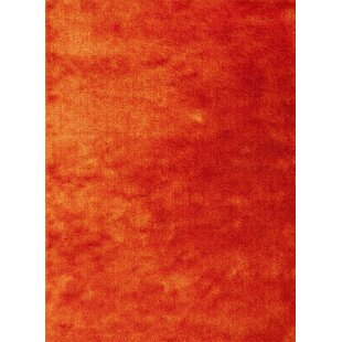 Andre Sunset Orange Indoor/Outdoor Area Rug