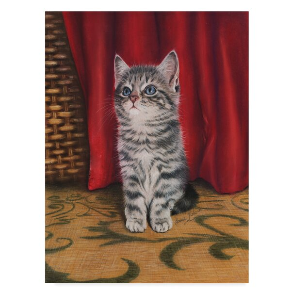 Trademark Art Grey Kitten And Red Curtain Acrylic Painting Print On Wrapped Canvas Wayfair