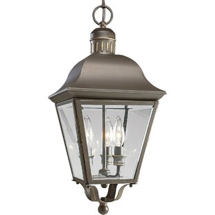 Looking for Triplehorn 3-Light Hanging Brass Lantern By Alcott Hill