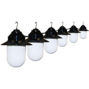 20 ft. 6-Light Shaded String Light by Polymer Products