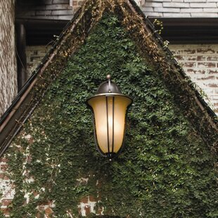 Bolla 4-Light Outdoor Wall Lantern by Hin..