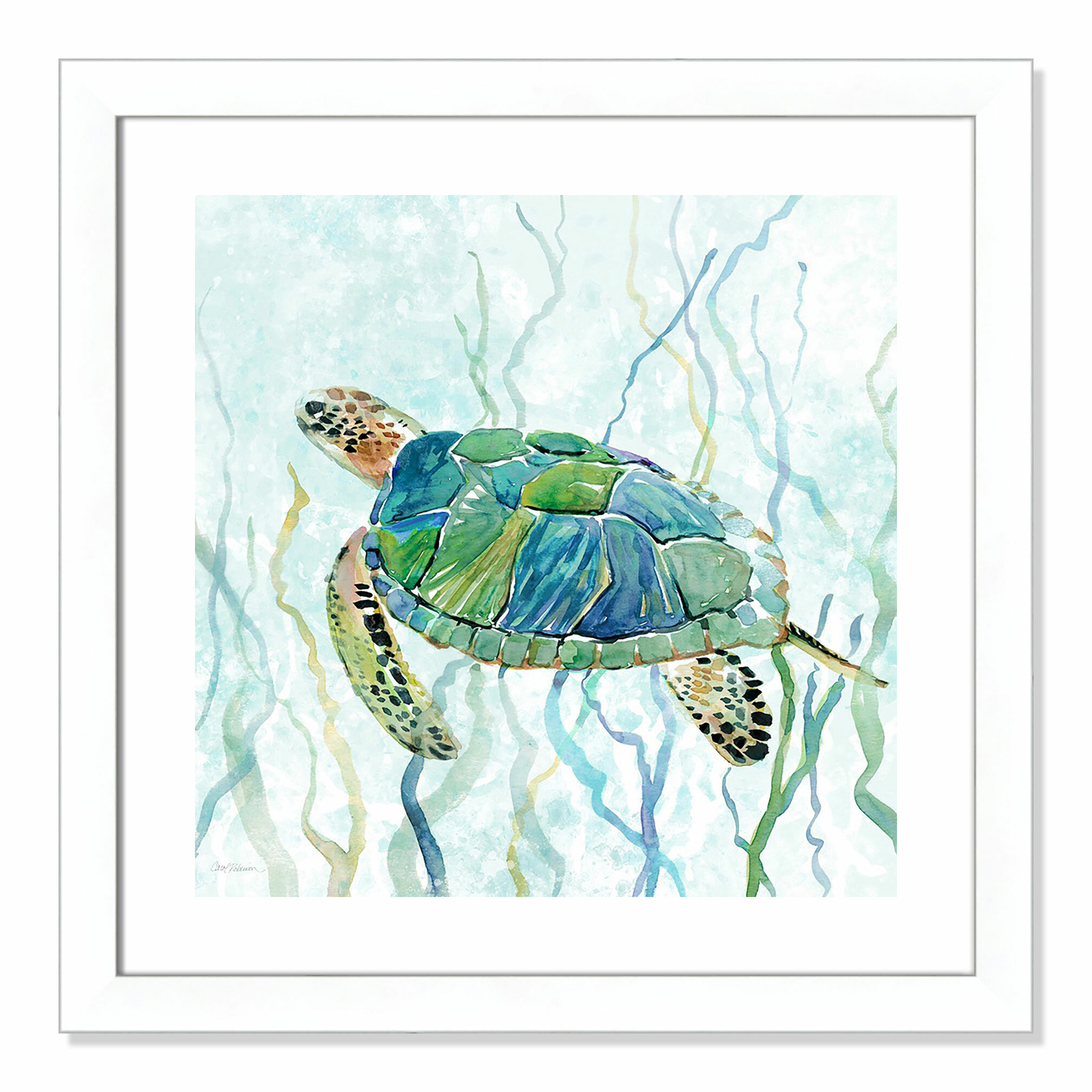 Turtle Funny wall art printed on canvas 22 X 16 inch solid frame