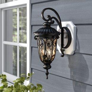 Budget Erickson 1-Light Outdoor Wall Lantern By Astoria Grand