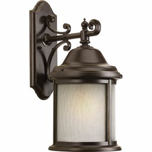 Reviews Drumakeely 1-Light Outdoor Wall Lantern By Alcott Hill