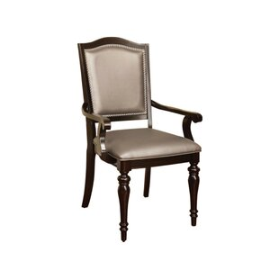Arik Armchair (Set of 2) by Darby Home Co