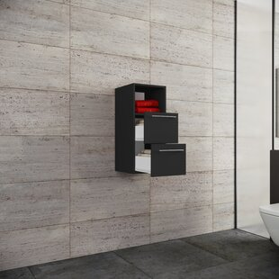Mcmasters 33 X 75cm Wall Mounted Cabinet By Mercury Row