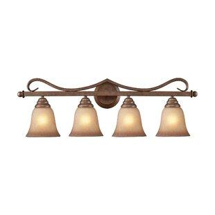 Darby Home Co Rosenblum 4-Light Vanity Light