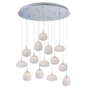 Delcid 14-Light Pendant by Orren Ellis