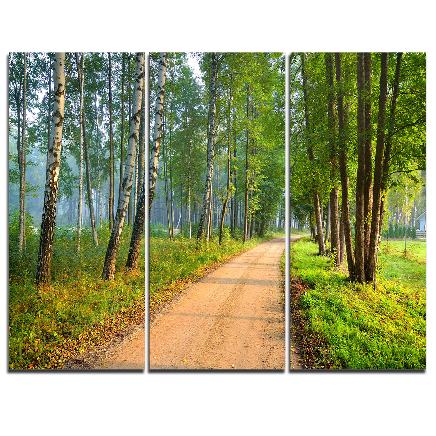 Designart Road In Green Morning Forest 3 Piece Graphic Art On Wrapped Canvas Set Wayfair