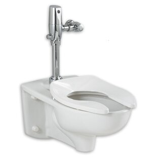 American Standard Afwall EverClean 1.28 GPF Elongated One-Piece Toilet