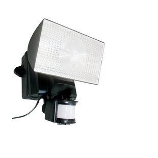 Berntson LED Flood Light By Latitude Run Outdoor Lighting