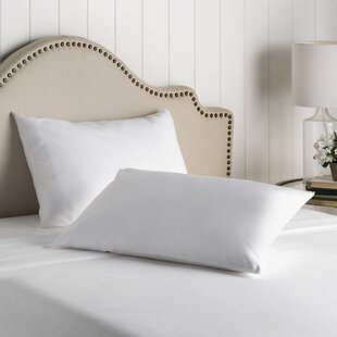 4 Pack Pillow Protectors Zipped Case Covers Piping 100/% Cotton Percale Easy Care