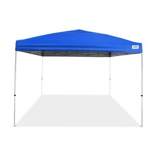 Caravan Canopy V-Pro Series 10 Ft. W x 10 Ft. D Steel Pop-Up Canopy
