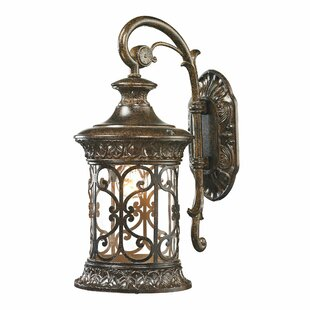 Binghamton 1-Light Outdoor Wall Lantern by Fleur De Lis Living