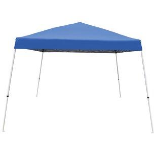 V-Series 2 12 Ft. W x 12 Ft. D Steel Pop-Up Canopy by Caravan Sports