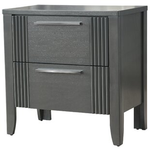 Brayden Studio Coppin 2 Drawer Nightstand