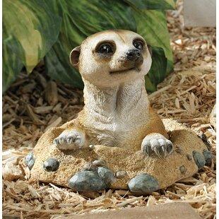 Kalahari Meerkat Out Of Hole Statue Image