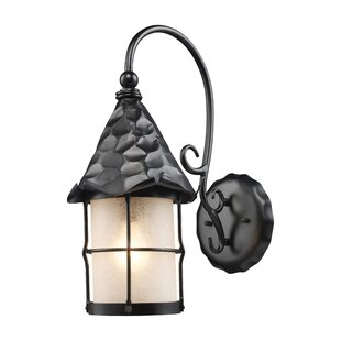 Millwood Pines Busch 1-Light Outdoor Wall Lantern