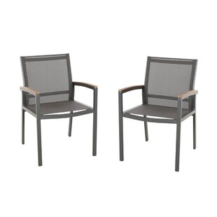 Orellana Patio Dining Chair (Set of 2)