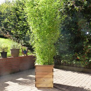 Tall Outdoor Planters Tall outdoor planters wayfair tall planter box workwithnaturefo