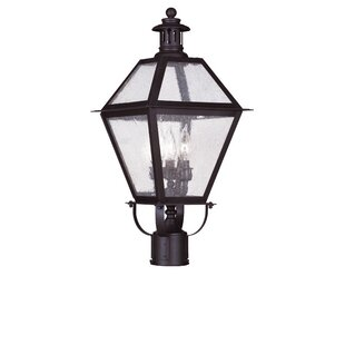Affordable Price Outdoor 3-Light Lantern Head By Darby Home Co