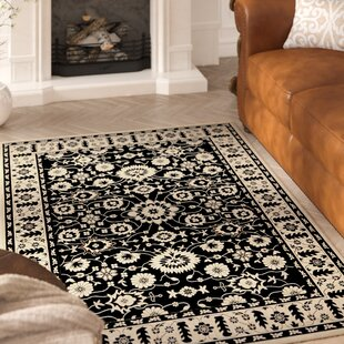 Beasley Black/Creme Indoor/Outdoor Area Rug