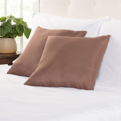 Throw Pillows For Brown Couch Wayfair