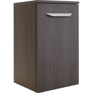 Review Lavella 35.5 X 59cm Wall Mounted Cabinet