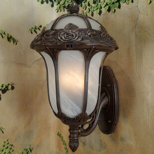 Best Reviews Rose Garden 3-Light Outdoor Sconce By Special Lite Products