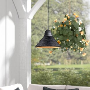 Zuleika 1-Light Outdoor Pendant