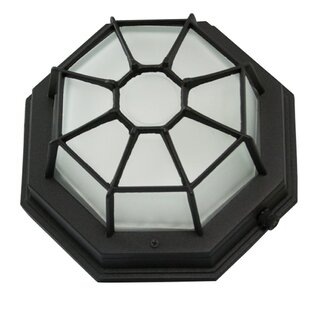 Great choice 1-Light Flush Mount By Efficient Lighting