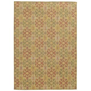 Tommy Bahama Cabana Pink/Green Indoor/Outdoor Area Rug
