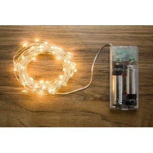 Boston Warehouse Trading Corp Allure 60-Light 20 ft. Fairy String Lights