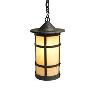 Steel Partners San Carlos 1-Light Outdoor Pendant