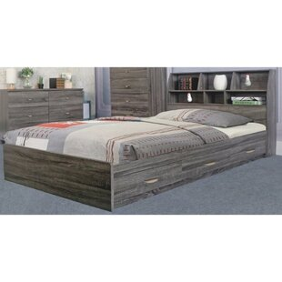 Latitude Run Doering Luxurious Storage Platform Bed