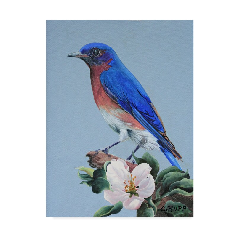 Charlton Home Eastern Bluebird In Trees Acrylic Painting Print On Wrapped Canvas Wayfair