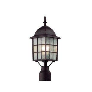 Woodard 1-Light Lantern Head by Loon Peak