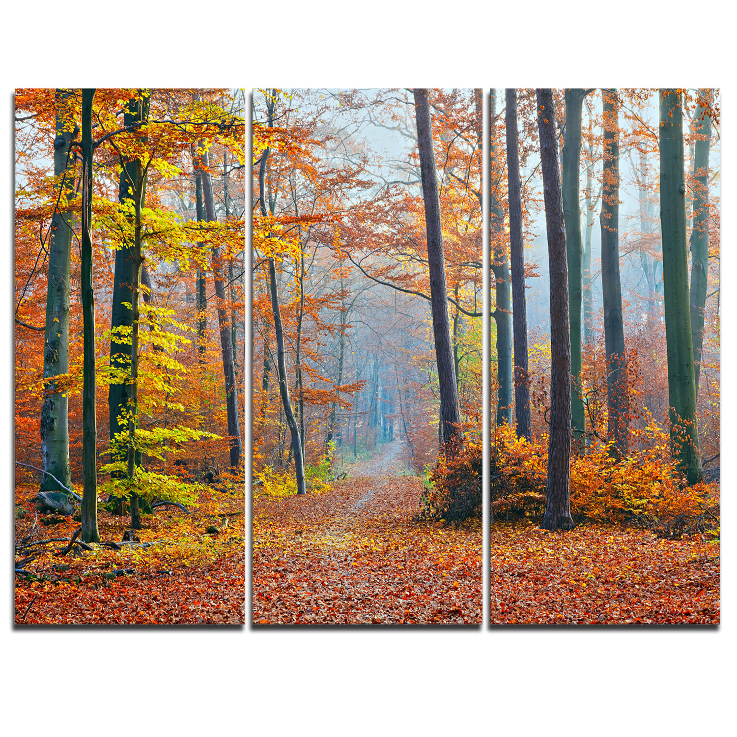 Designart Orange Green Fall Leaves In Forest 3 Piece Graphic Art On Wrapped Canvas Set Wayfair