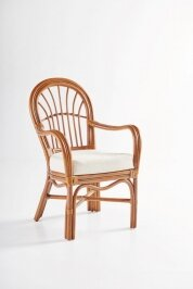 Bay Isle Home Strachan Dining Chair with Cushion