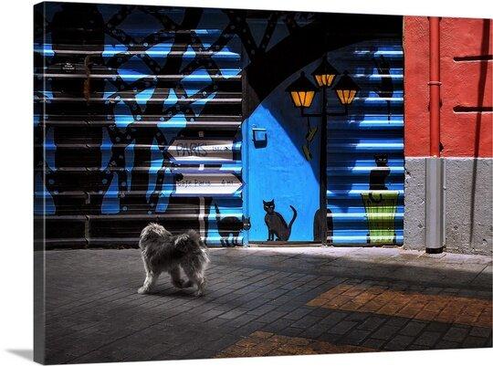 East Urban Home The Street Cats By Juan Luis Duran Photographic Print Wayfair Ca